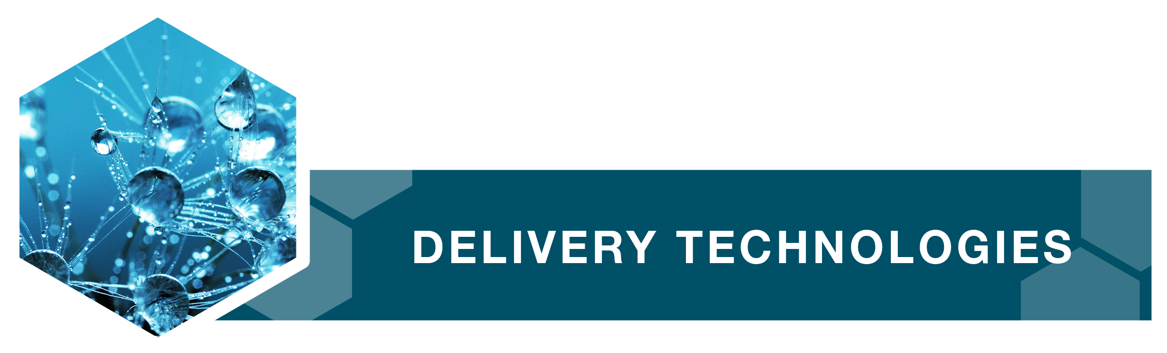 delivery-tech.png