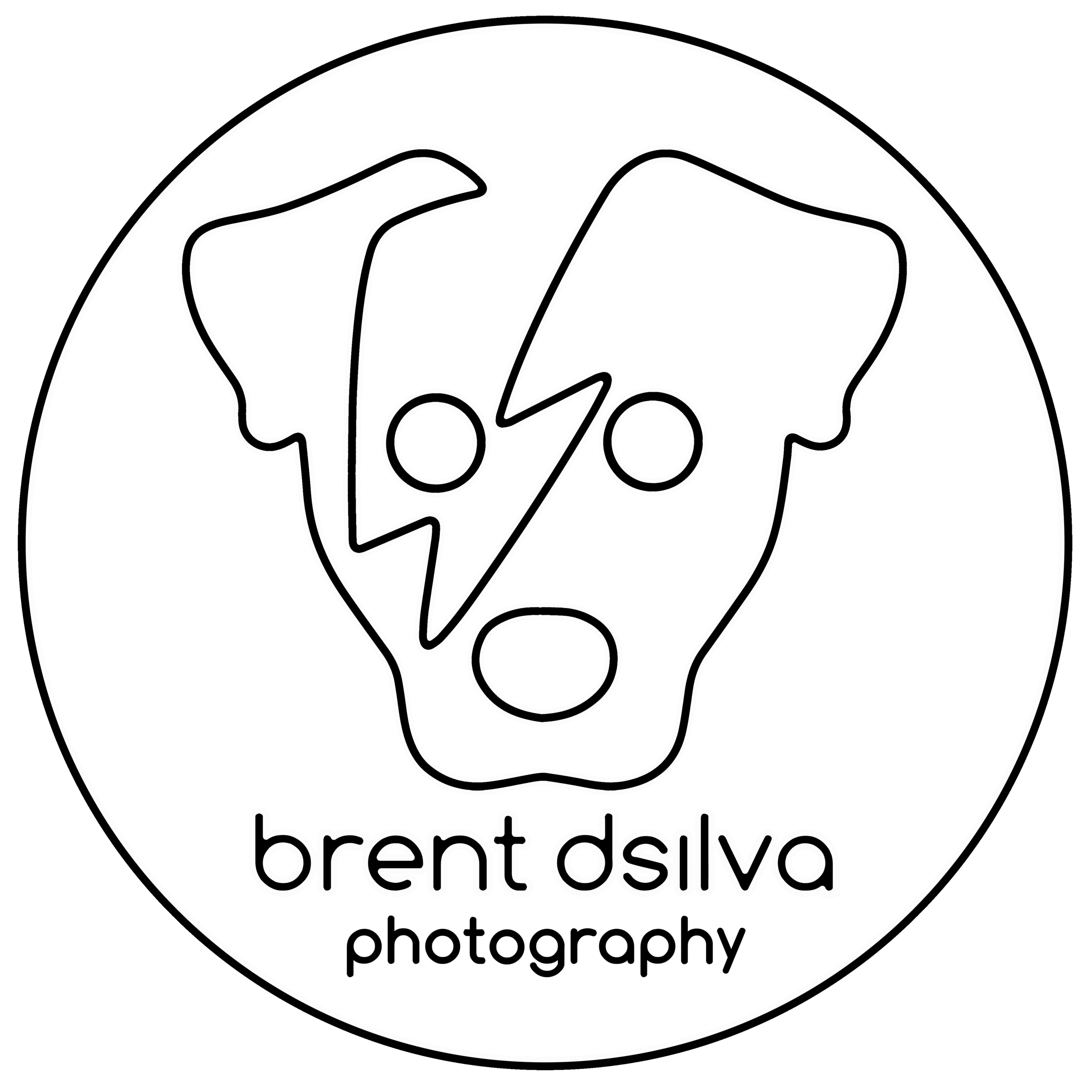 Brent D'Silva Logo - White on Black - No Fill.png