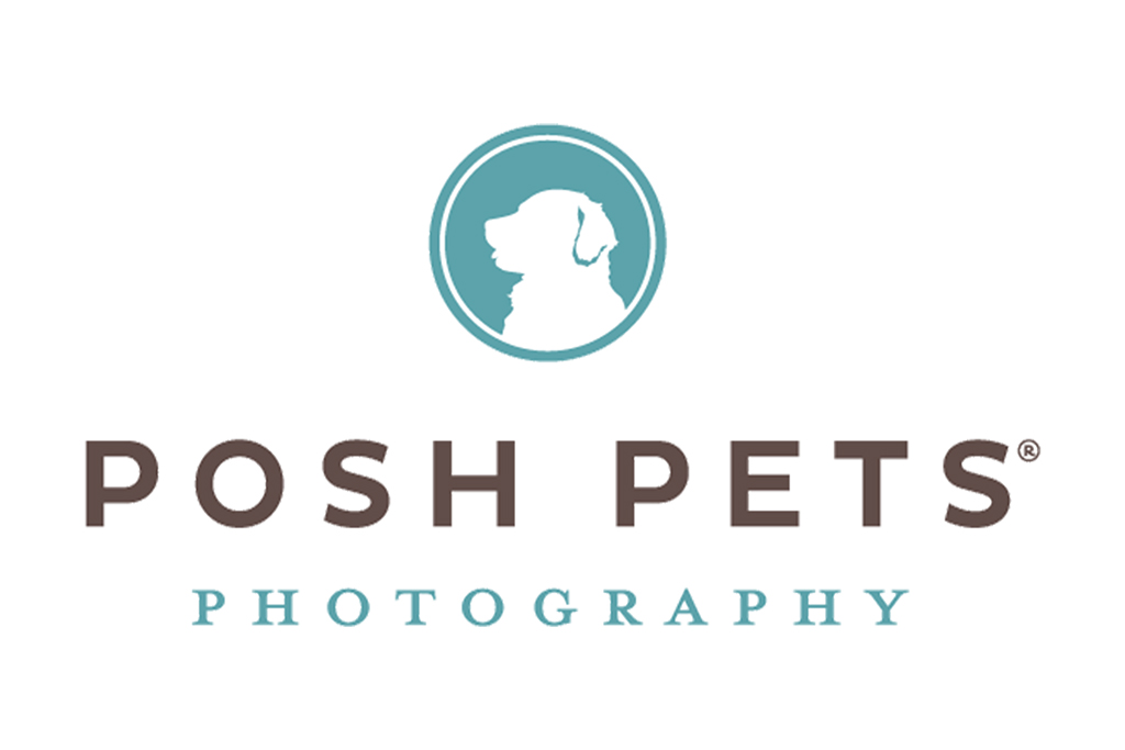 posh-pets-photography-web.jpg