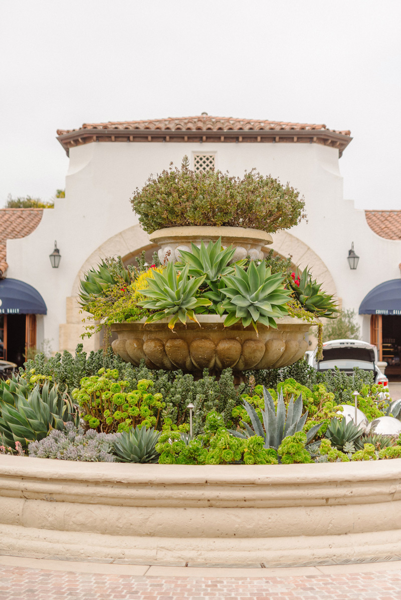 magnoliaeventdesign.com | Magnolia Event Design | Mike Arick Photography | Santa Barbara Wedding and Events Designing and Planning | Ritz Carlton Bacara Weddings _.jpg