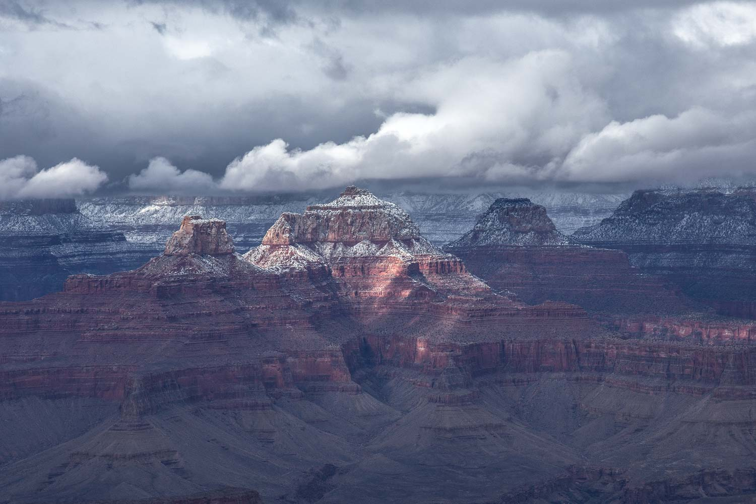 Frosted Canyon