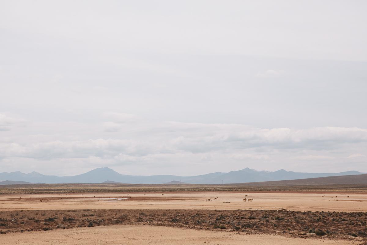 20121120_Peru_colca_Canyon_01.jpg