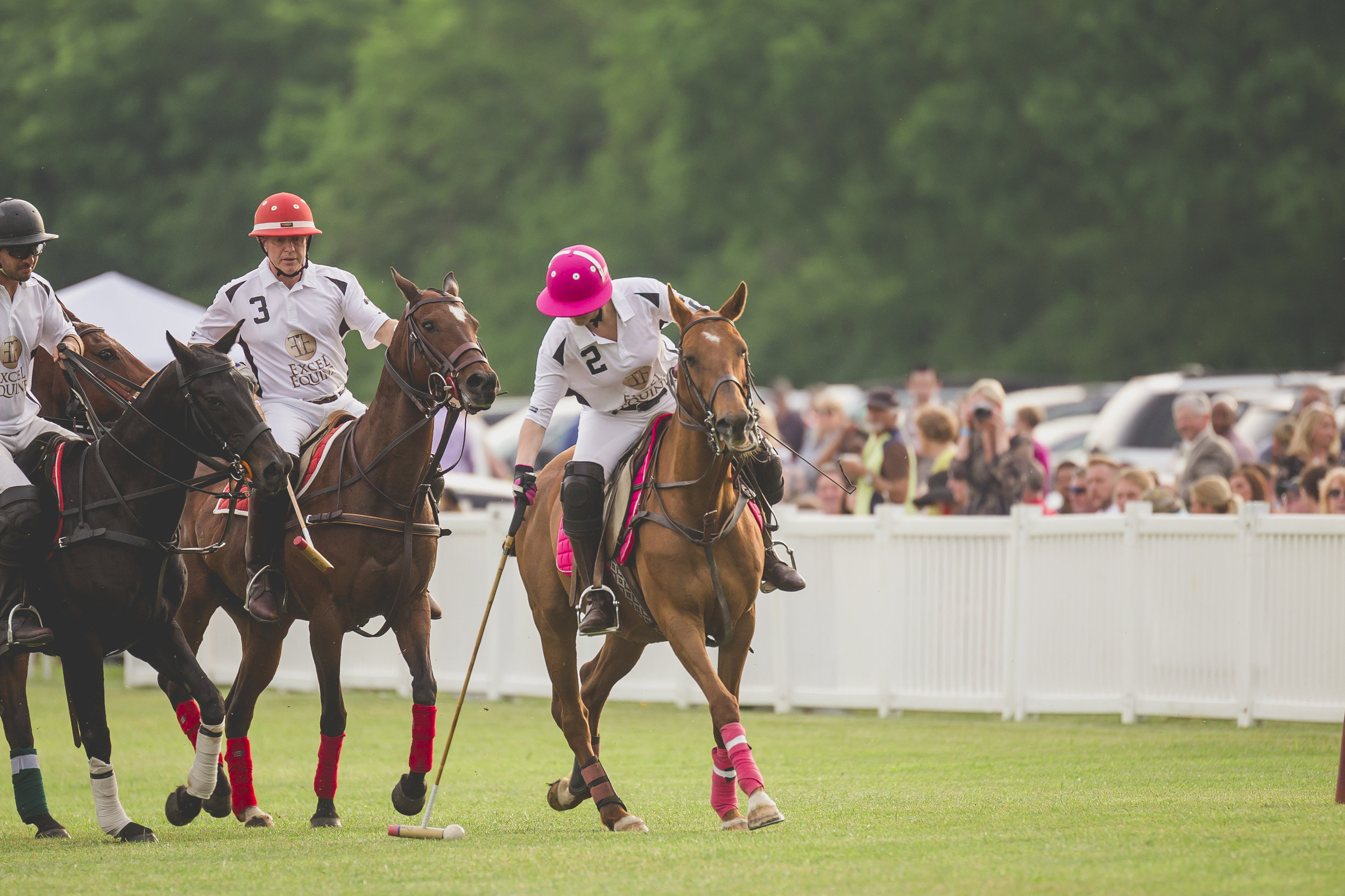 BBP-TWILIGHT POLO - -1-12.jpg