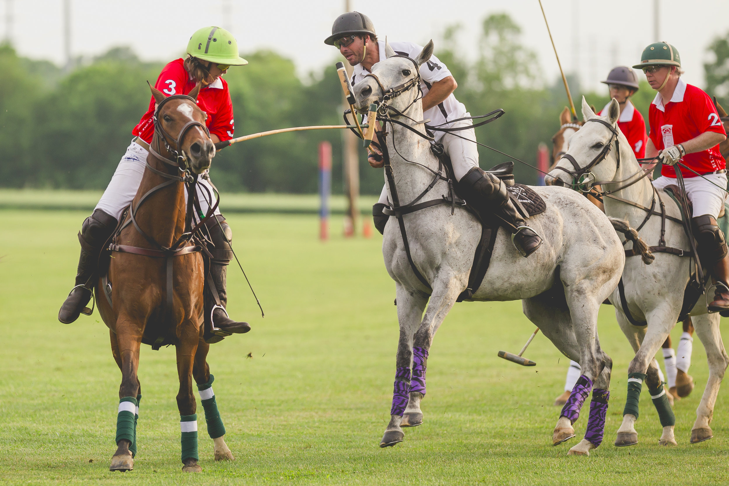 BBP-TWILIGHT POLO - -1-20.jpg