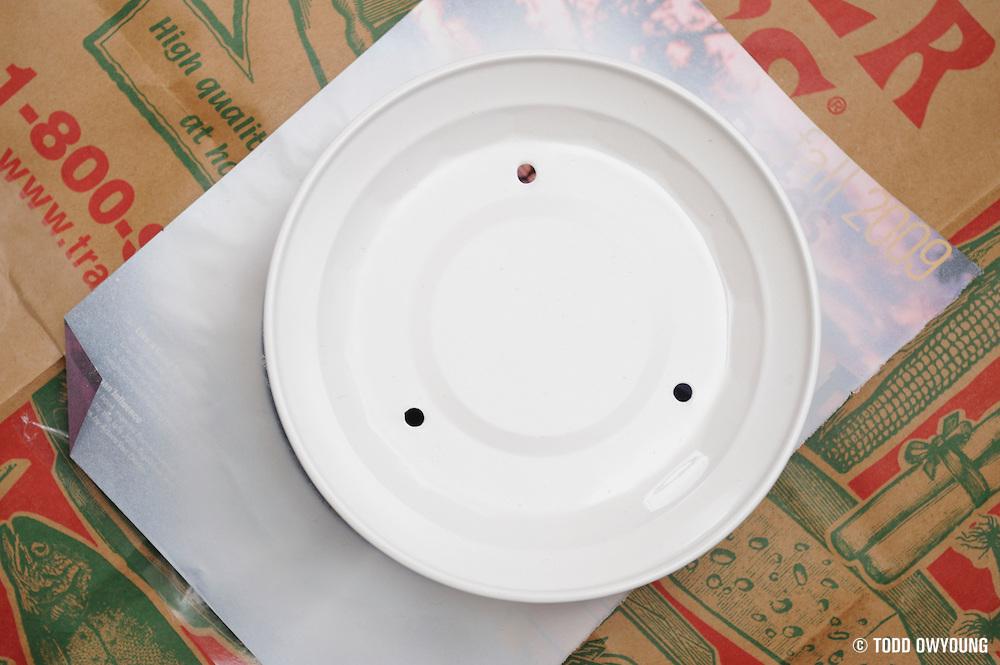beauty-dish-TO-DSC3834.jpg