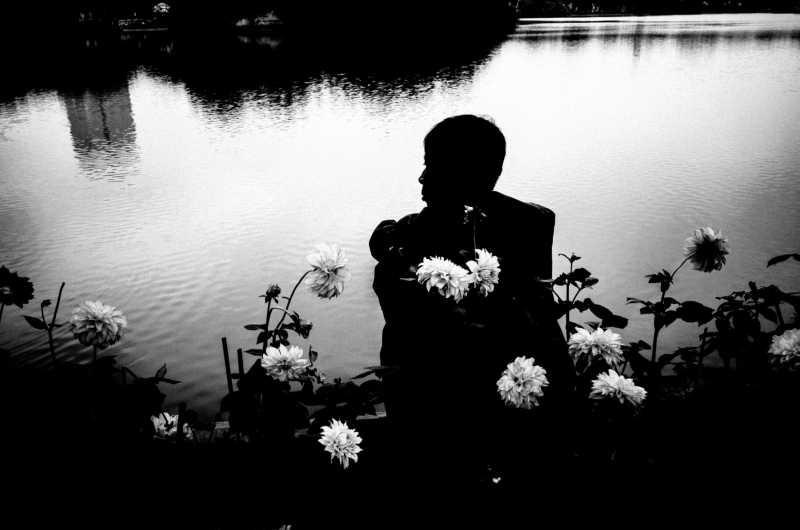 Man in a flower field