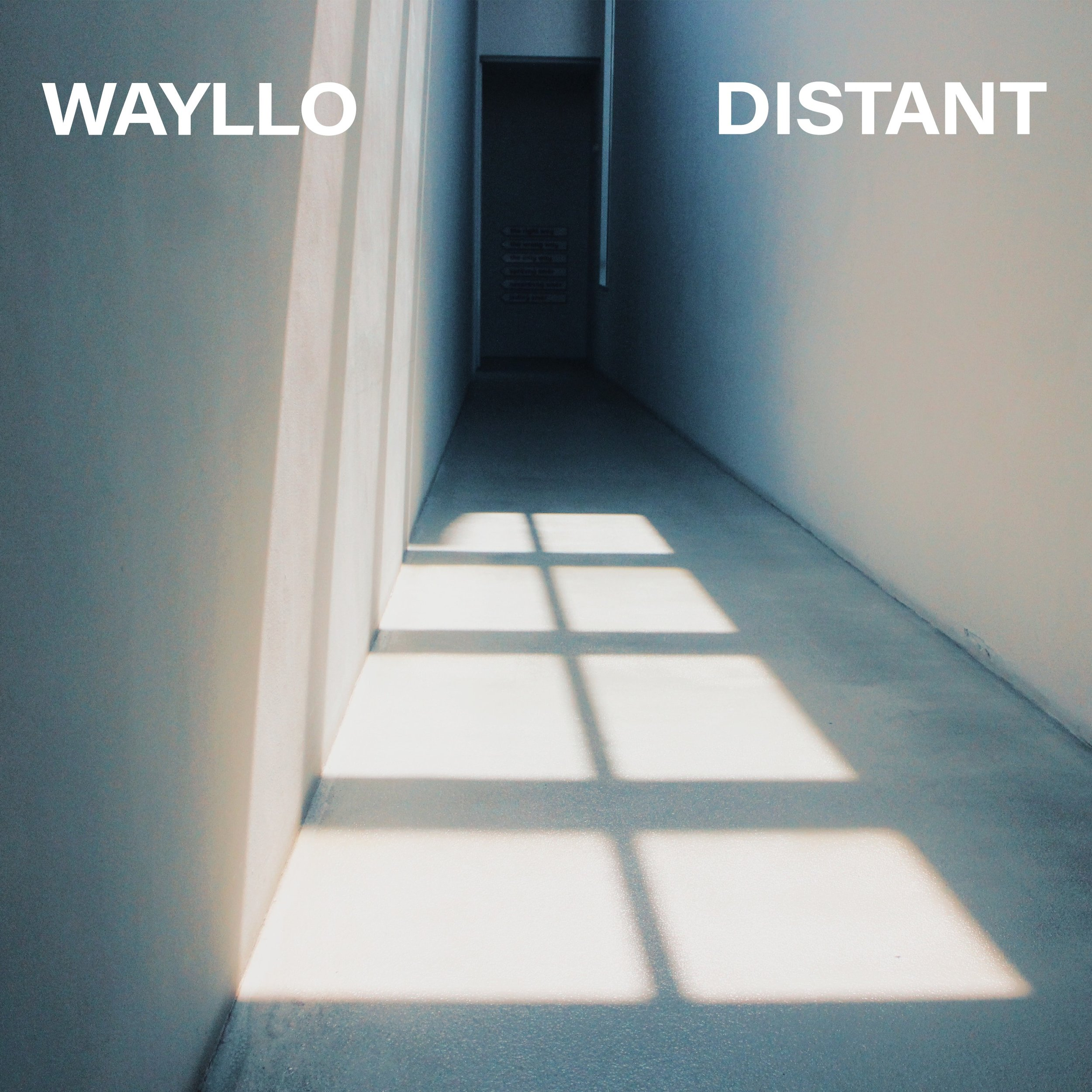 """""""Distant""""by  Wayllo -"""