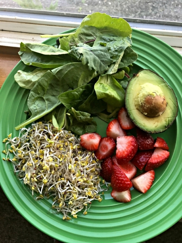 Green Shake Ingredients.jpg