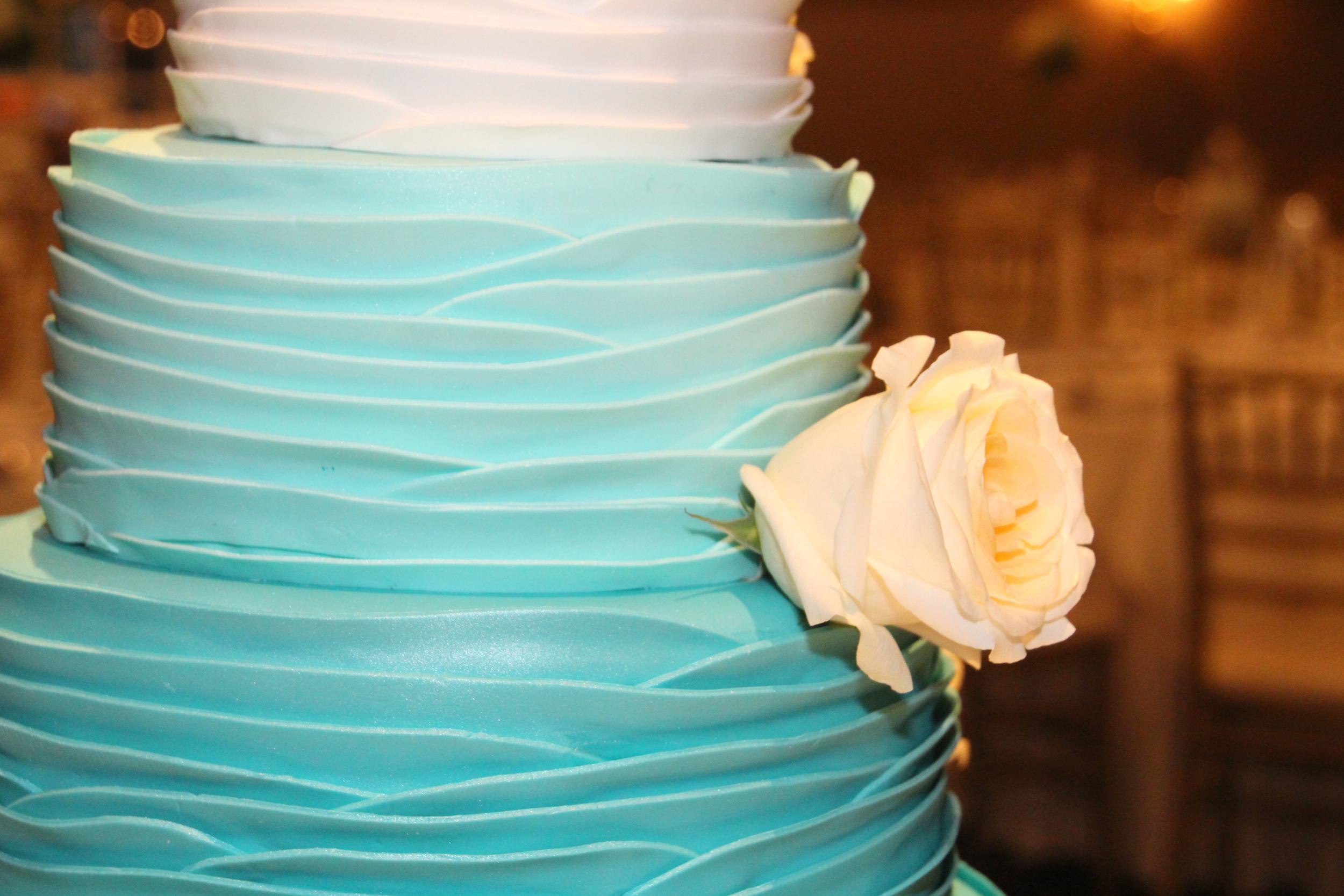 cake shot.jpg