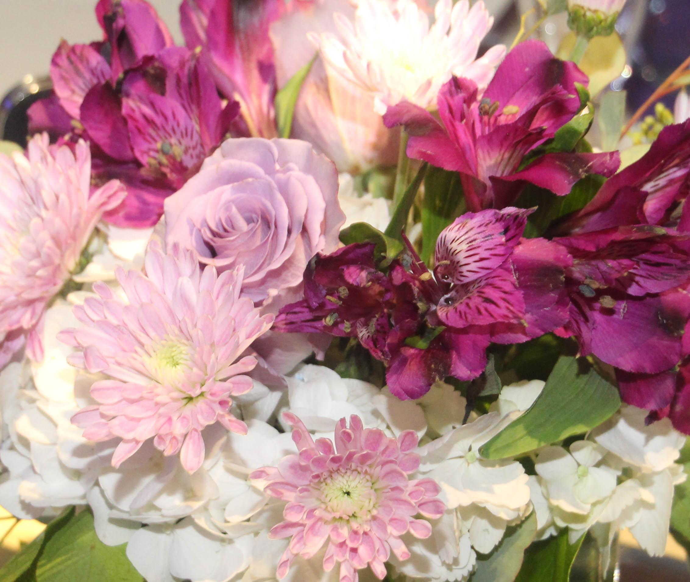 cover flowers.jpg