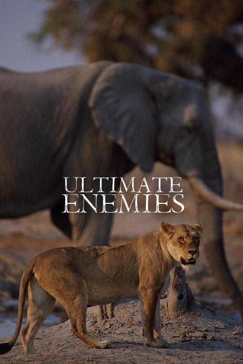 relentless enemies.jpg
