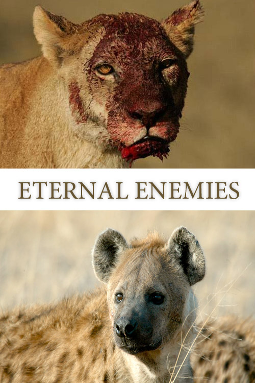 relentless enemies.jpg