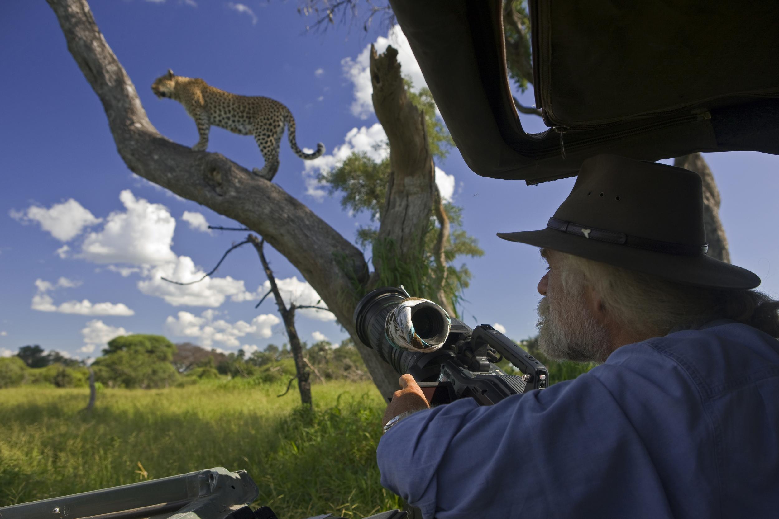 Mombo_Okavango_Botswana_BJoubert_20080212_1063.jpg