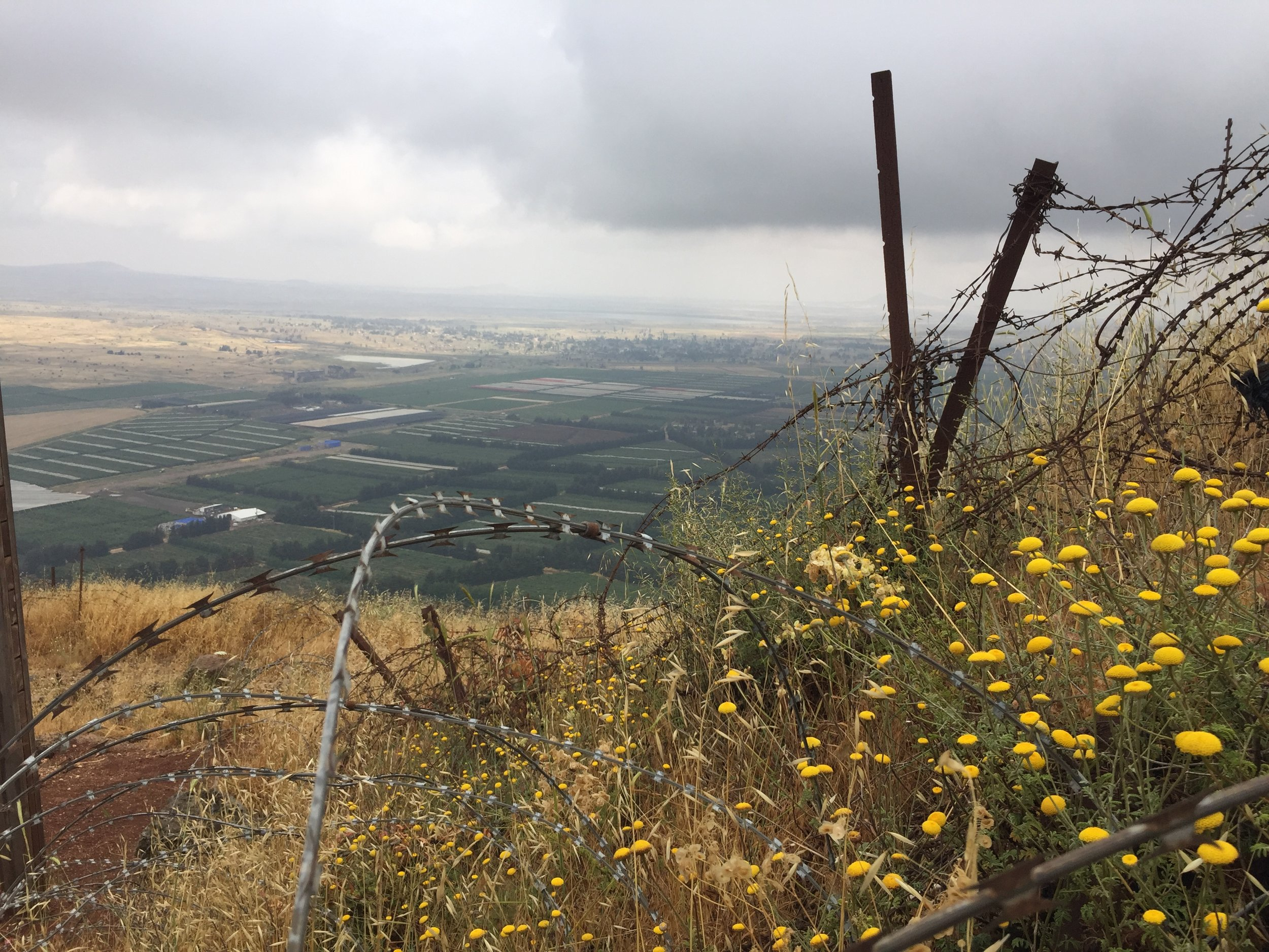 © Matthew Williams/The Conflict Archives: The Occupied Golan Heights overlooking the Quneitra ( Muḥāfaẓat Al-Qunayṭrah)  province.