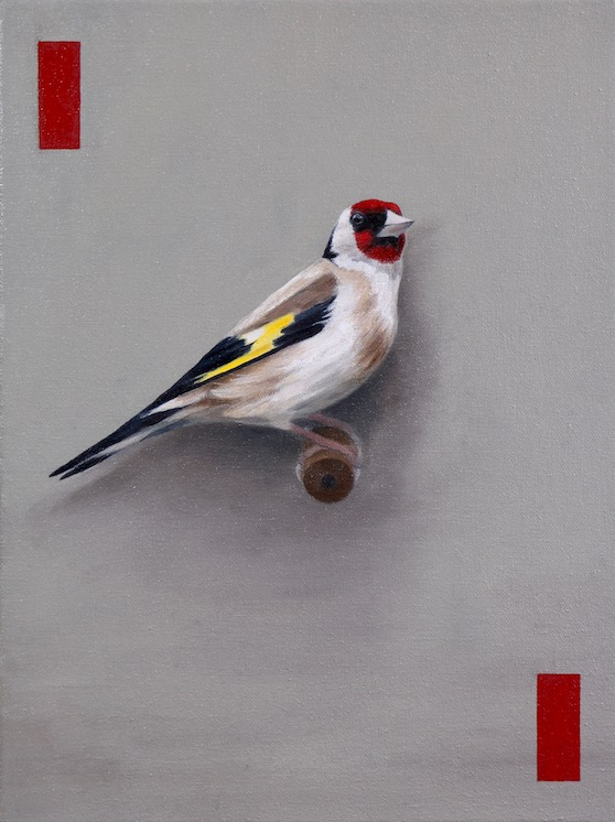 The Goldfinch, Oil on canvas, 40 x 30cm, 2019.jpg
