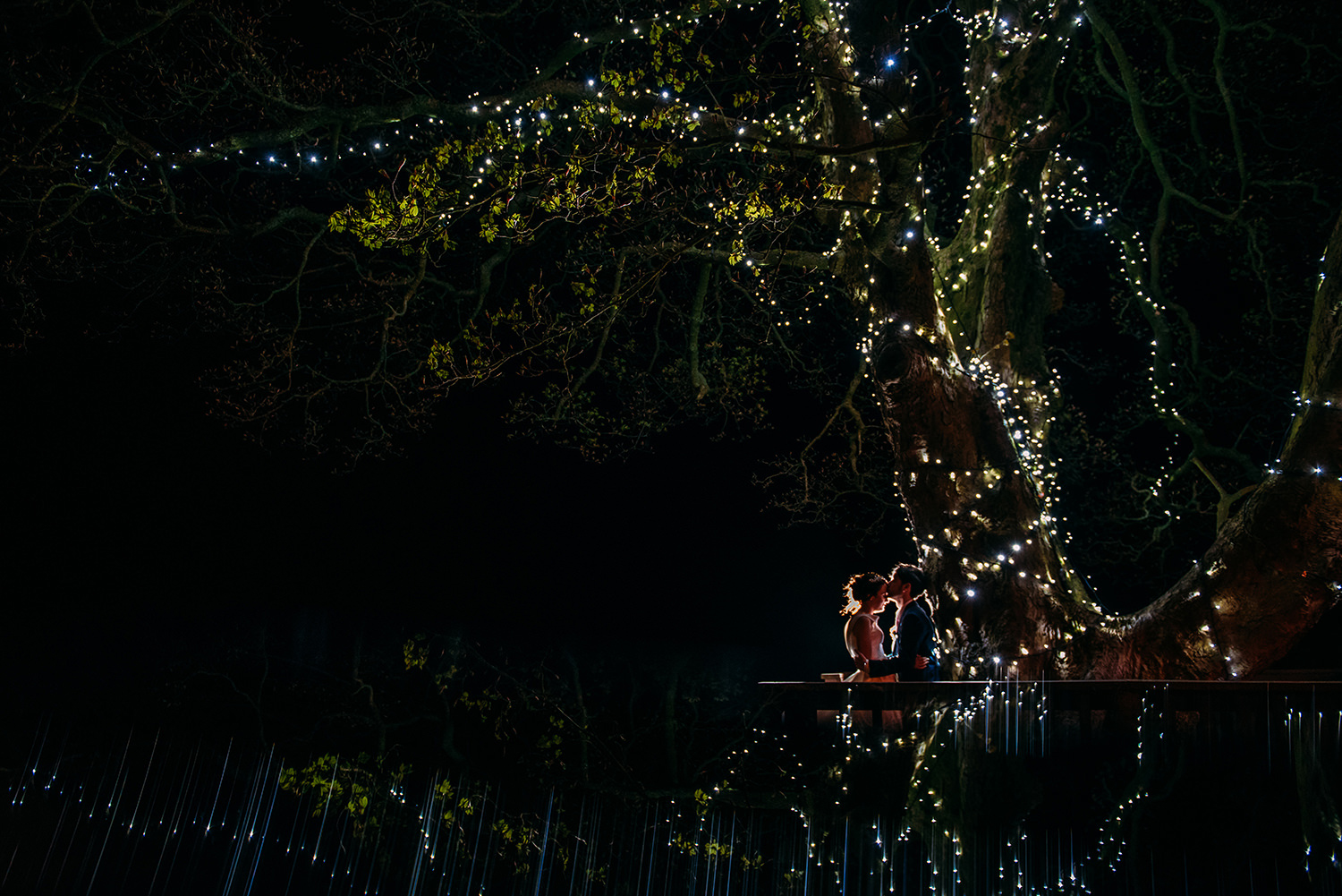 bride and groom under a big fairy-lit tree at night