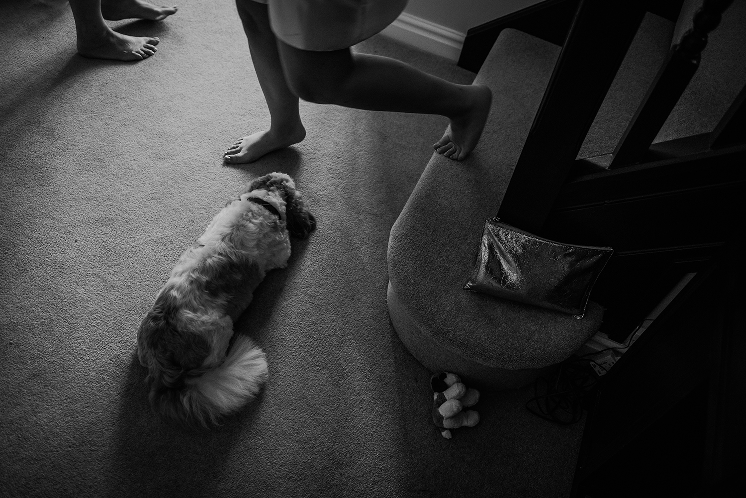 BW photo of people walking around a sleeping dog at the bottom of the stairs