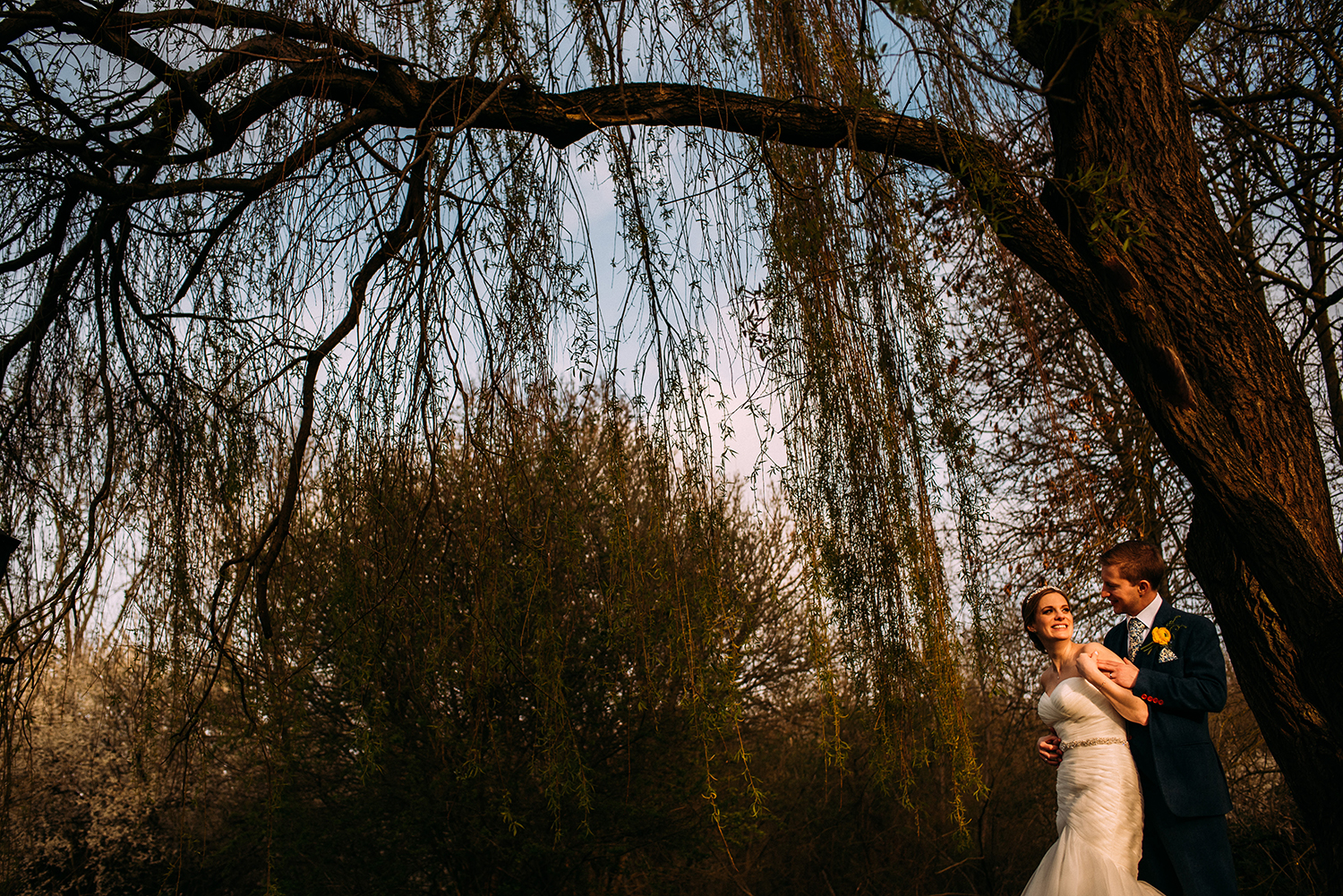 couple portrait under the weeping willow tree