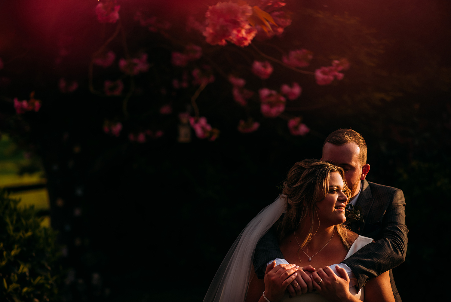 bride and groom in golden light under a blossom tree
