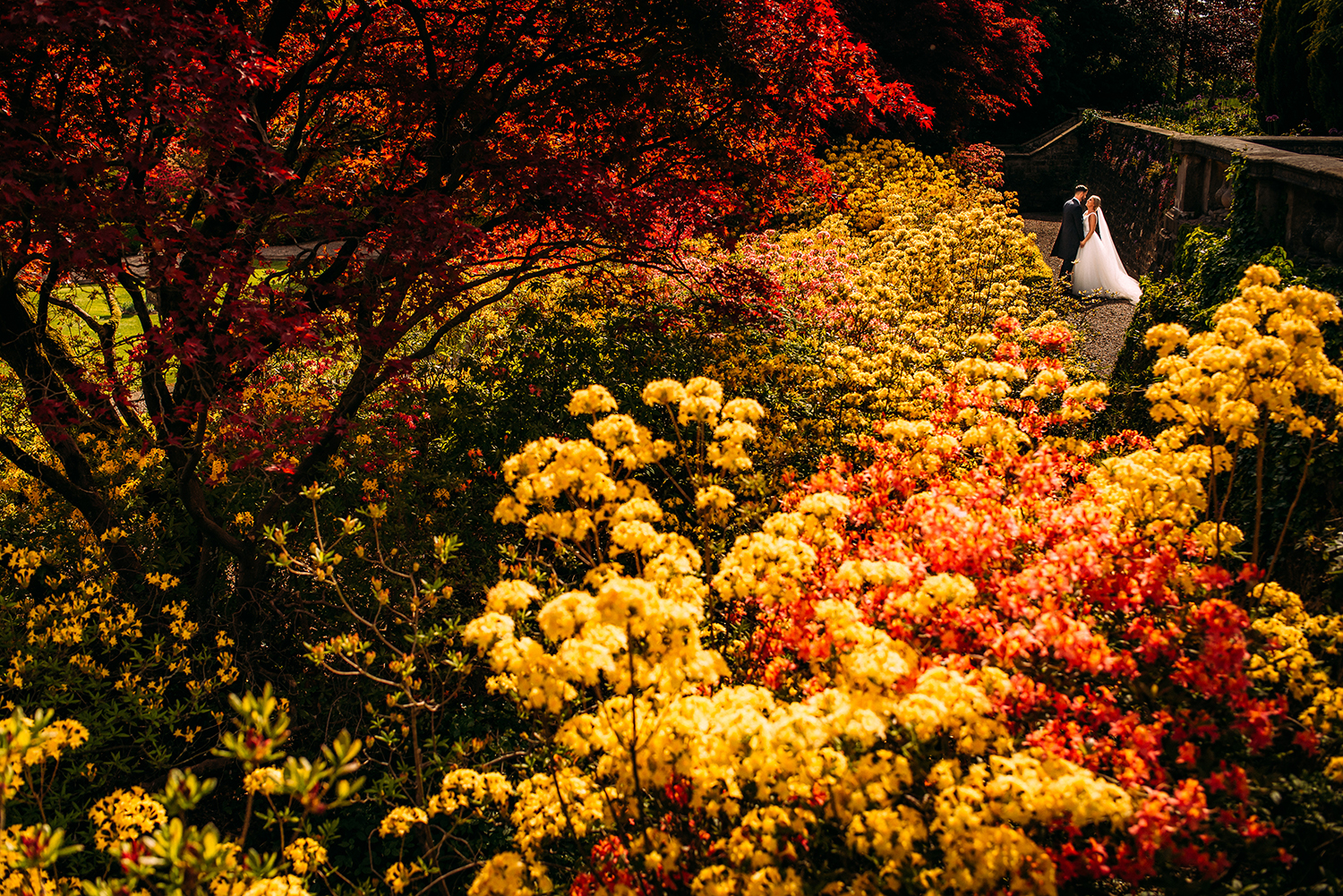 bride and groom among the bright colourful grounds at Eaves Hall