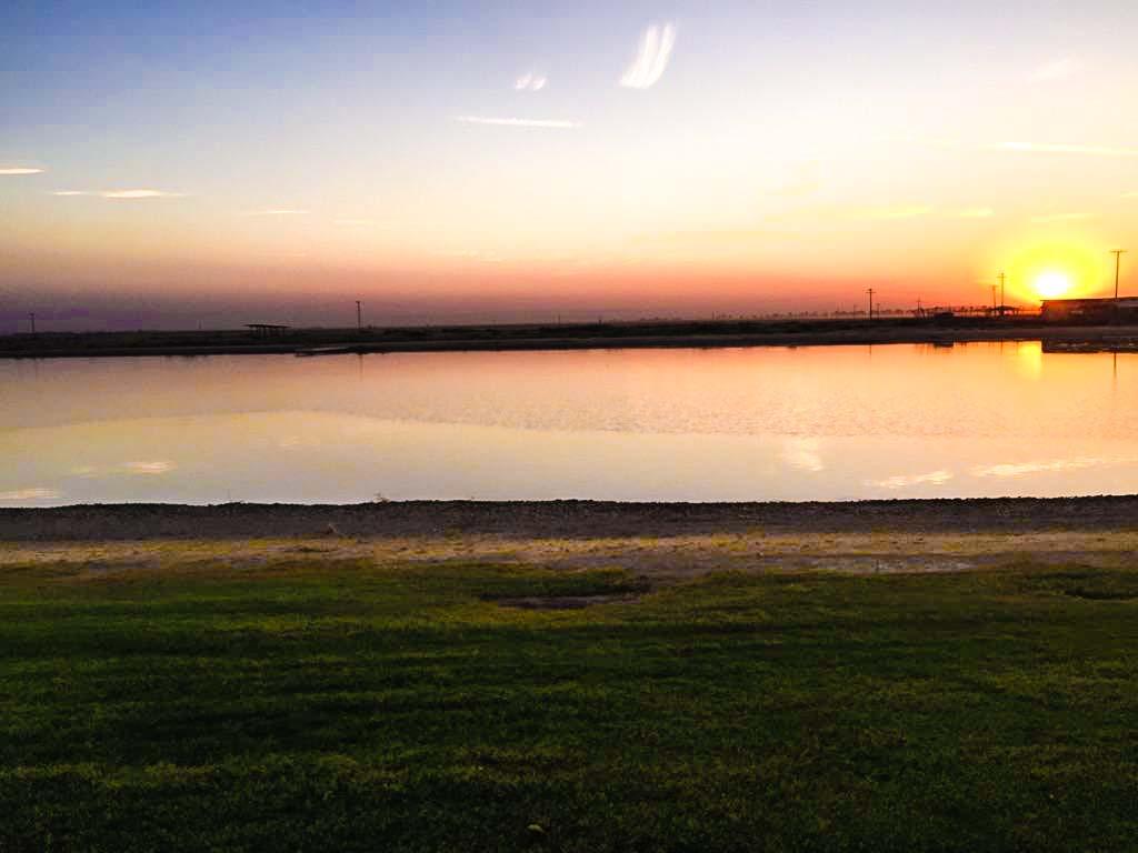 irowood-lakes-14.jpg
