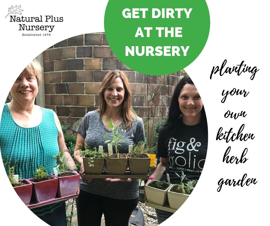 get dirty at the nursery (1).jpg
