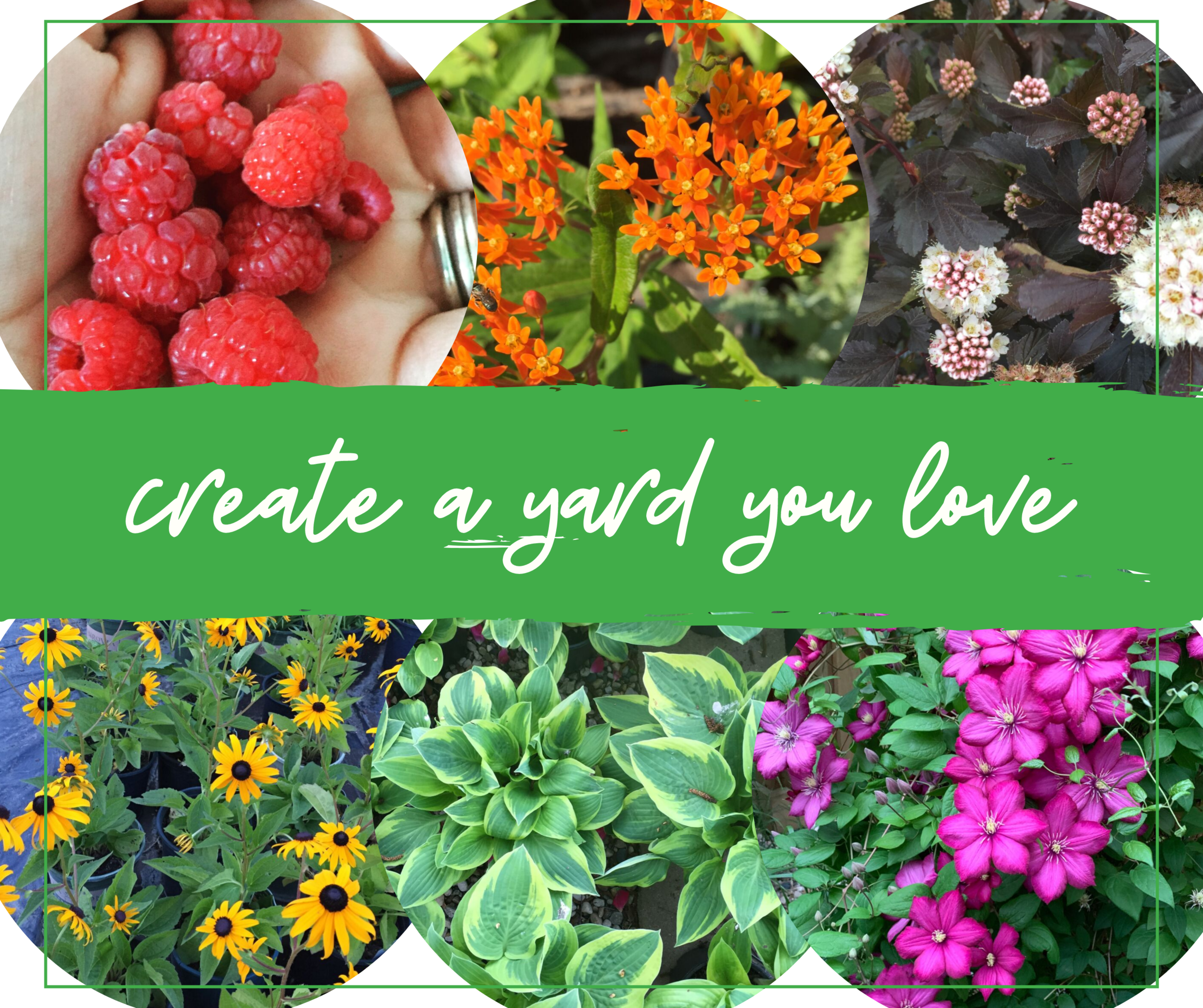 create a yard you love (1).png