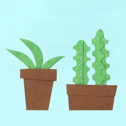 cacti.jpg