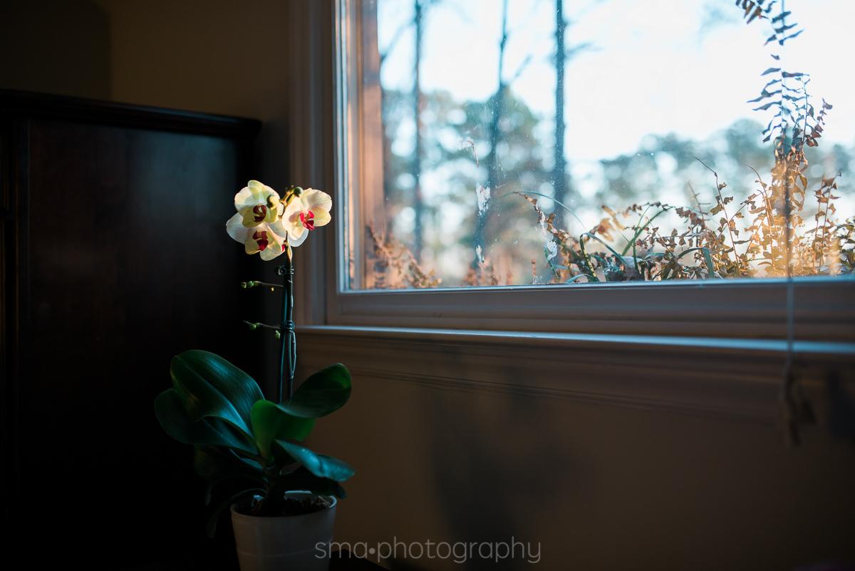 Albuquerque Family Photographer Documentary Lifestyle Photography