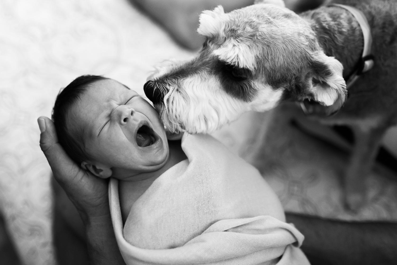 Albuquerque Newborn Photography Lifestyle-33.jpg
