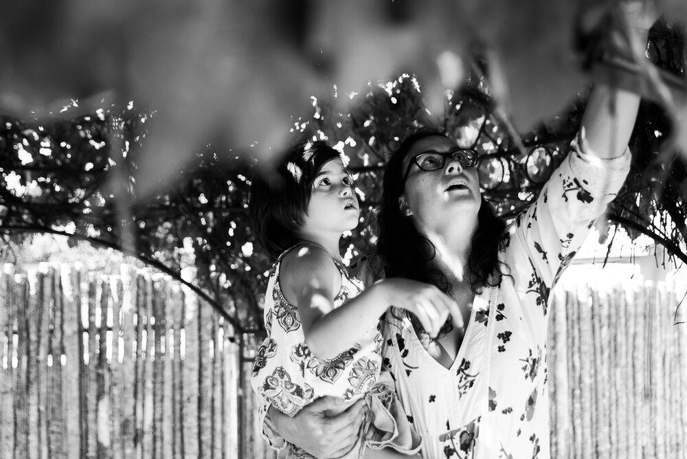 Albuquerque Family and Newborn Photographer SMA Photography P Family 2019-41.jpg