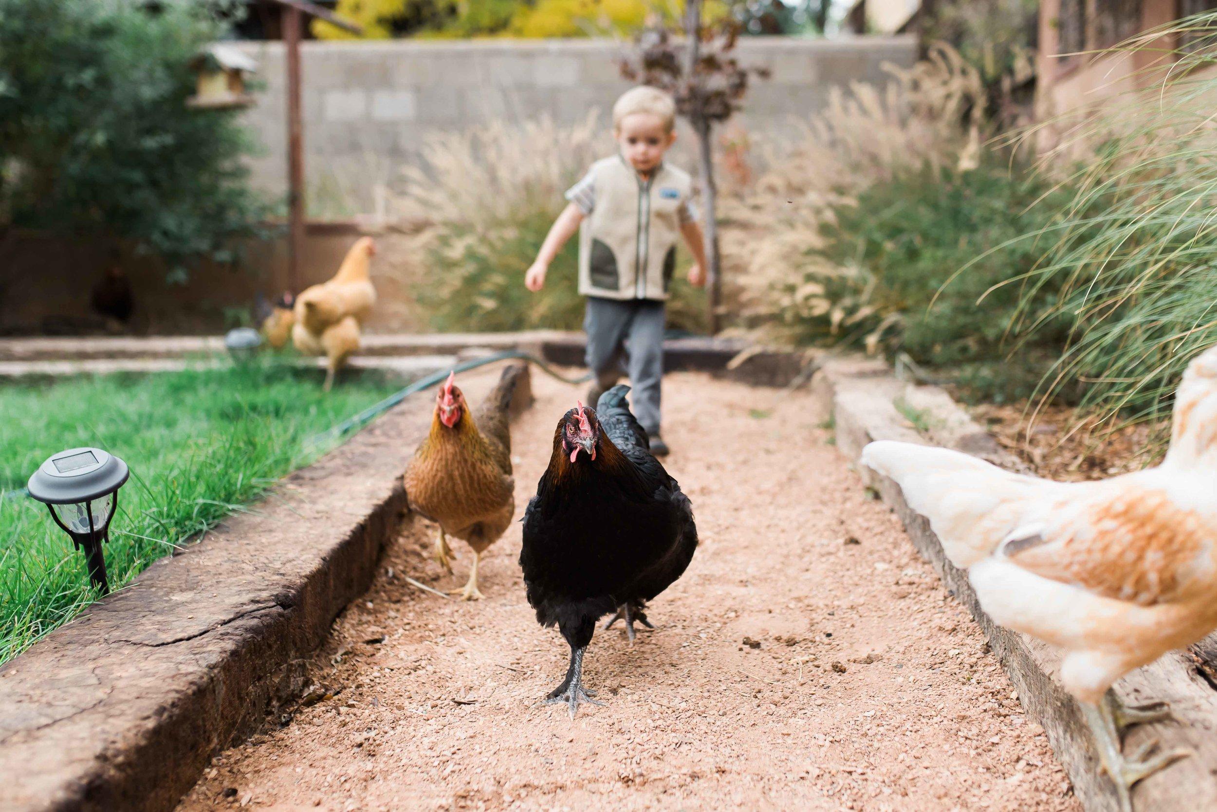 Albuquerque Newborn and Family Photographer SMA Photography Portfolio-27.jpg