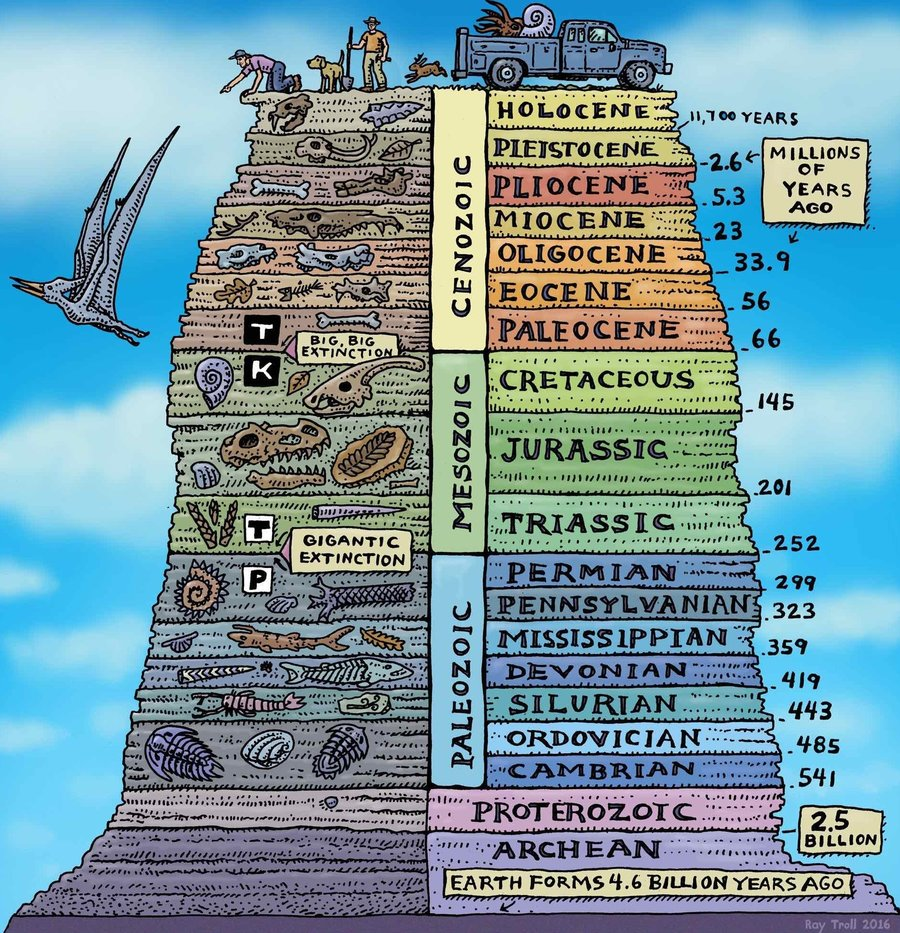 """Fro NPR: """"The Geologic History of Earth. Note the timescales. We are currently in the Holocene, which has been warm and moist and a great time to grow human civilization. But the activity of civilization is now pushing the planet into a new epoch which scientists call the Anthropocene.""""  Ray Troll/Troll Art"""