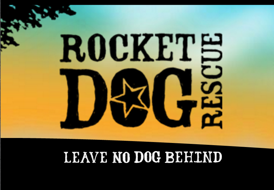 Rocket Dog Rescue is a well-loved Bay-Area dog rescue organization specializing in finding homes for the toughest cases - literally saving dogs from death row at high-kill shelters. They are an organization with a strong brand, and a devoted local following.