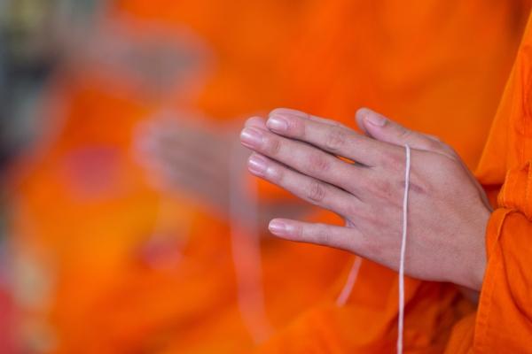 The Ashram's Elders wear orange. Orange is the color of the second chakra-Sacral Chakra.