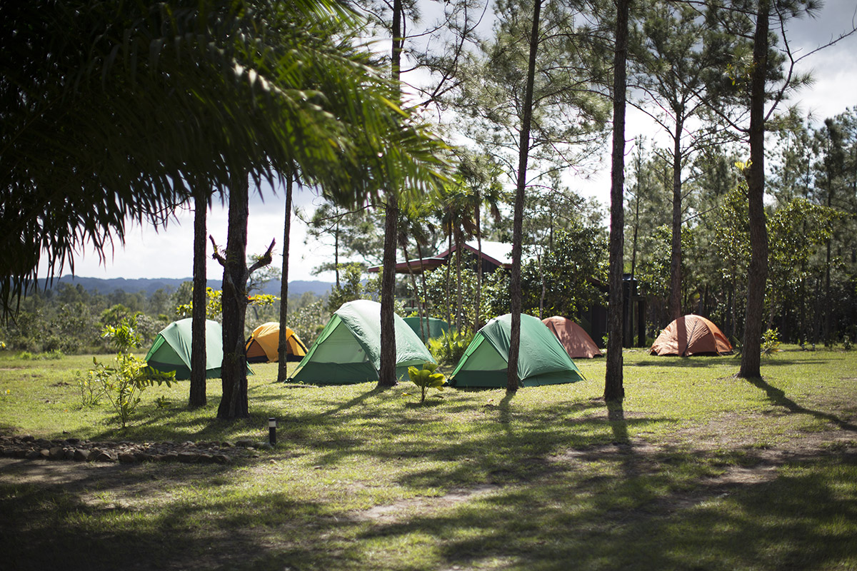 Monkey_BayBelize_Camping.jpg