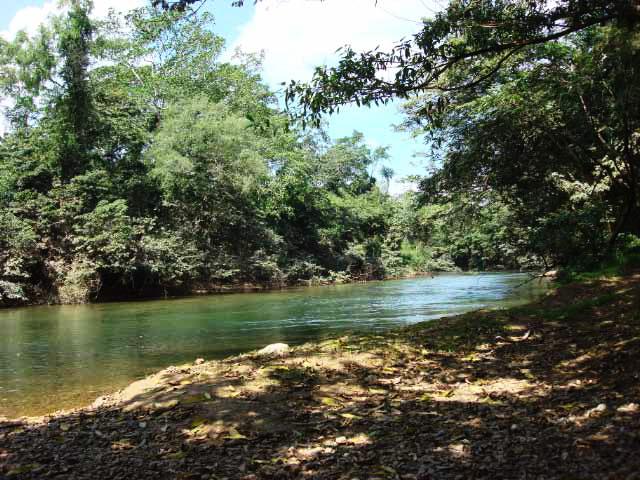Sibun River at Monkey Bay