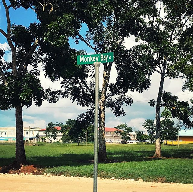 A street named after us in the #gardencity of #Belmopan! 😅  #monkeybaybelize #belizestudyabroad #studyabroad #Belize #capitol