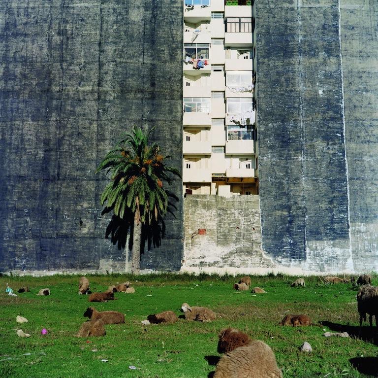 Barrada-Vacant Lot, Tanger 2001, 60x60cm, p45.jpg