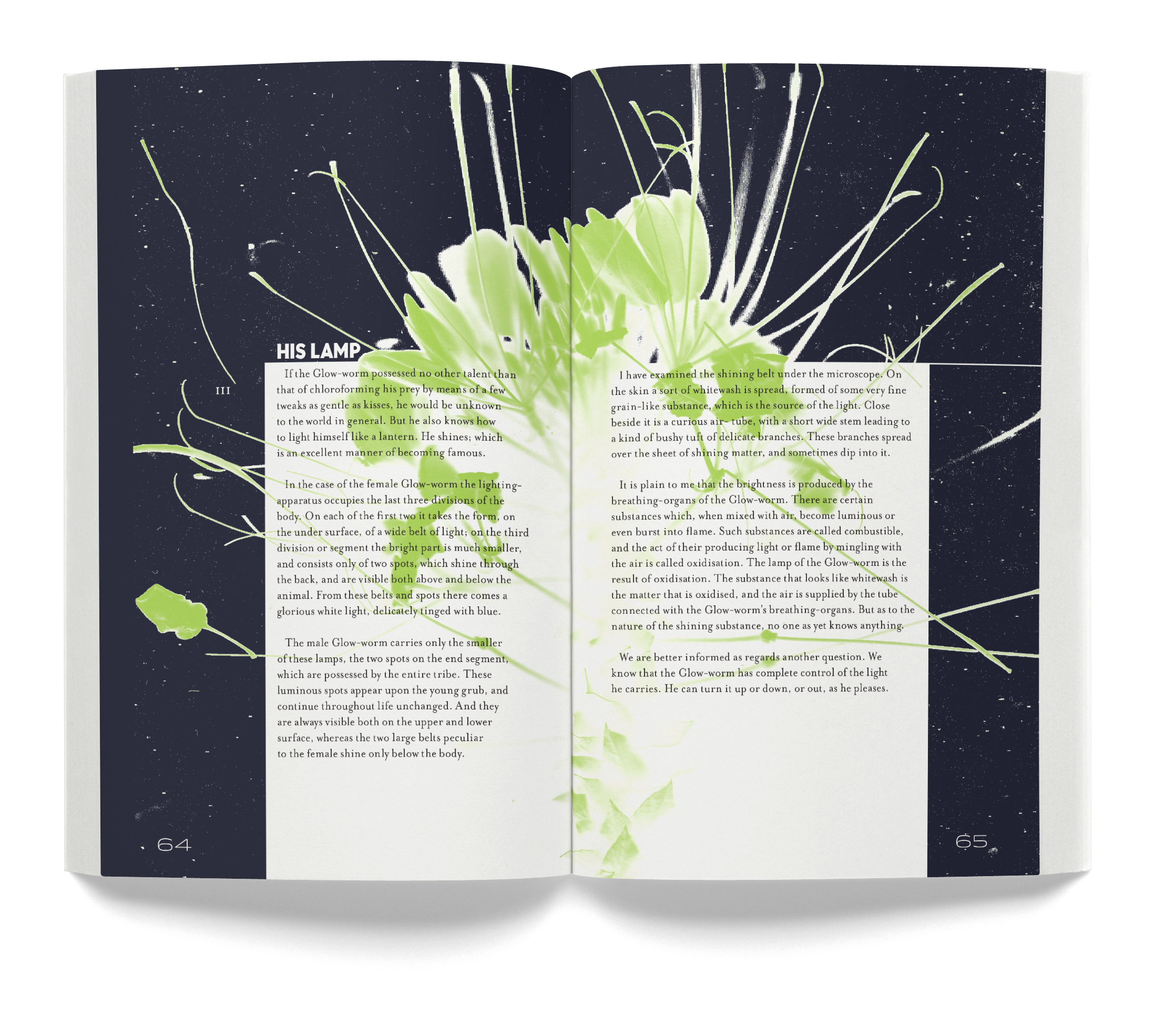 Book 0034-2 2016-07-18.jpg