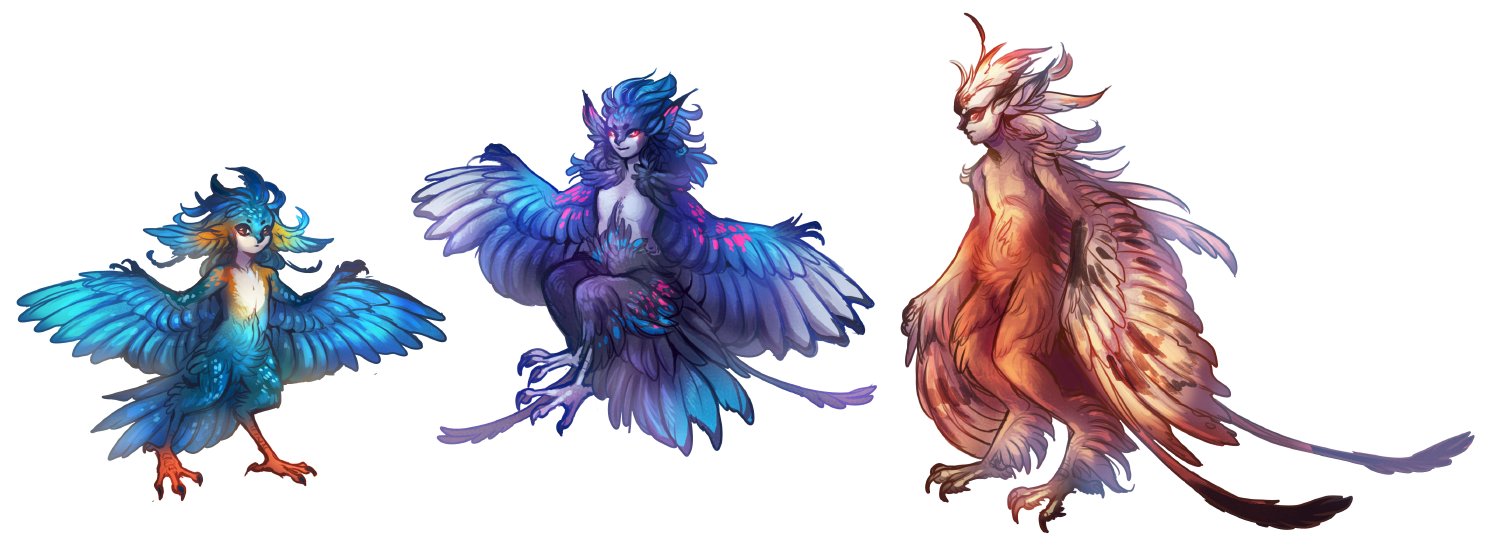concept sketches for a harpy race.