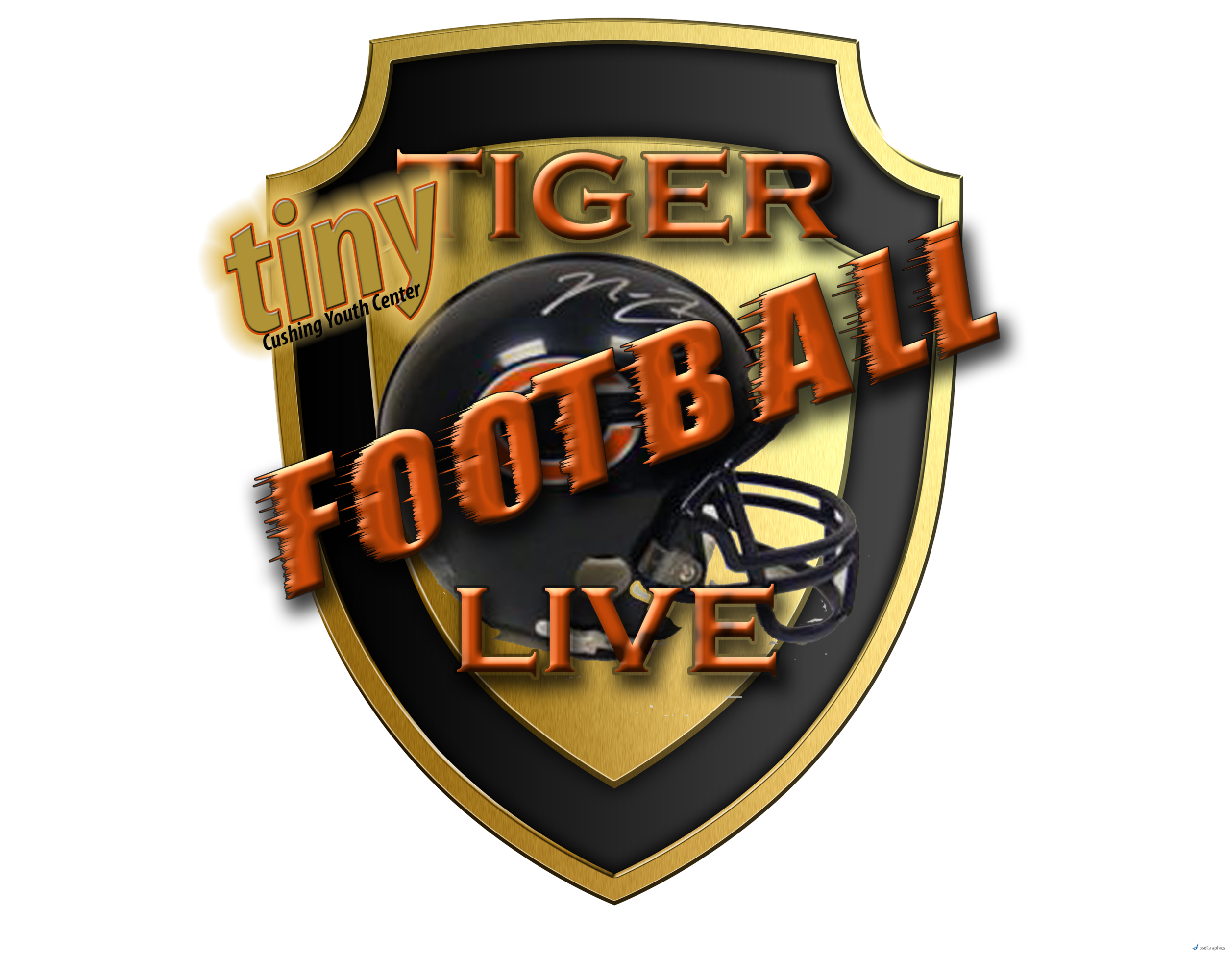 Coverage of the 2016 Playoof for 3rd, 4th & 6th grades, begins Satuirday Oct. 30th @12:45pm.