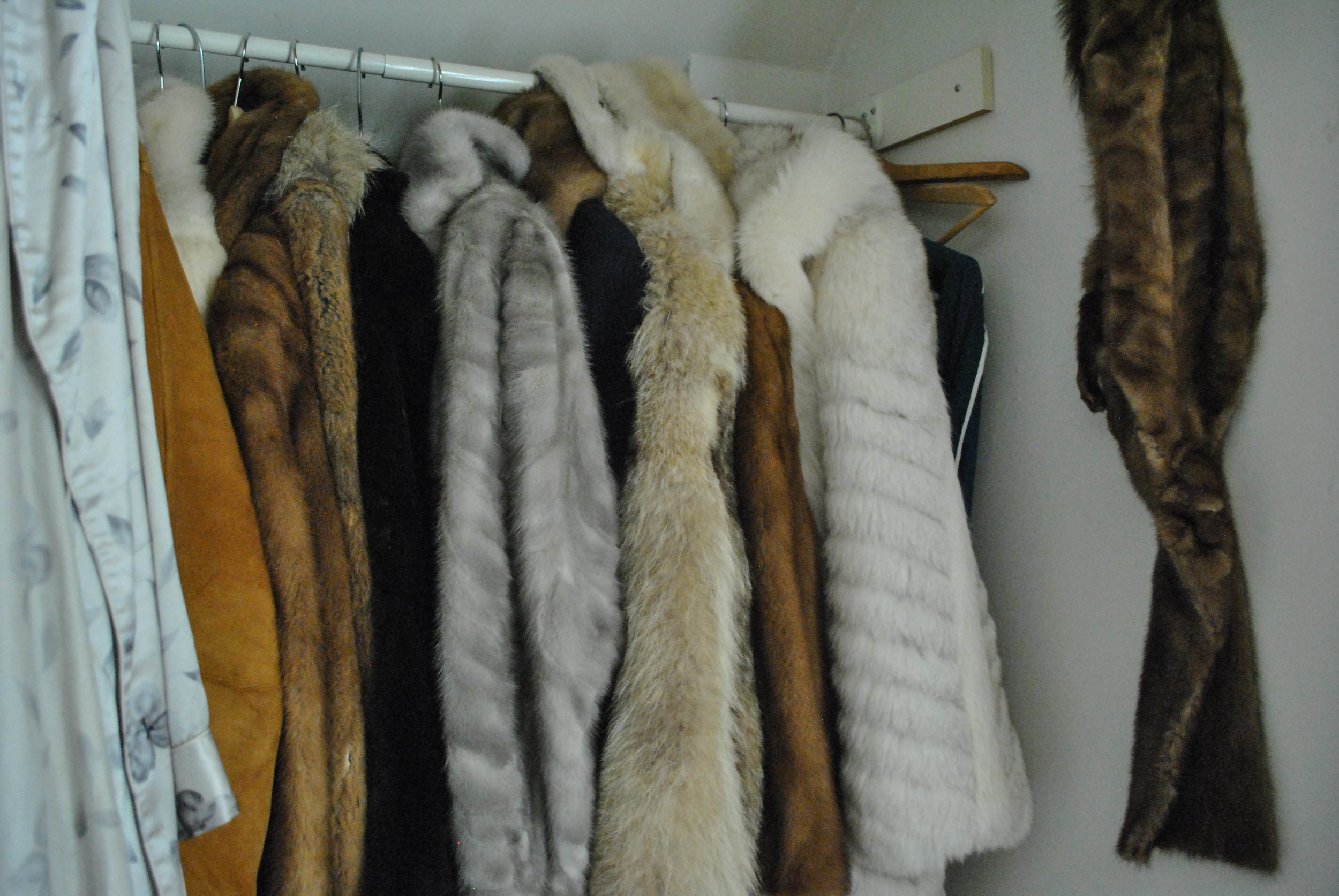 Literally drooling over Christie's fur closet