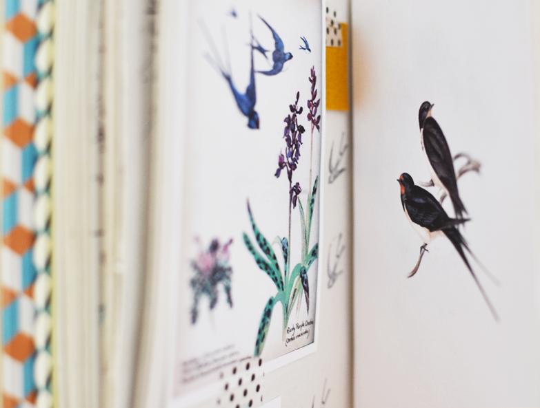 Estudos da coleção de cadernos de capa dura - andorinhas.  Studies for the collection of hardcover notebooks – andorinhas/swallows.
