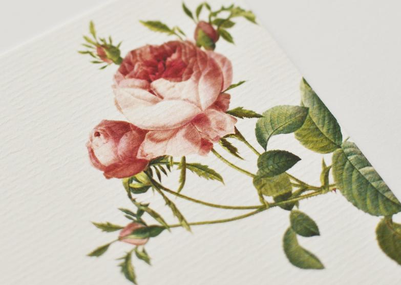 beija-flor estacionário personalizado