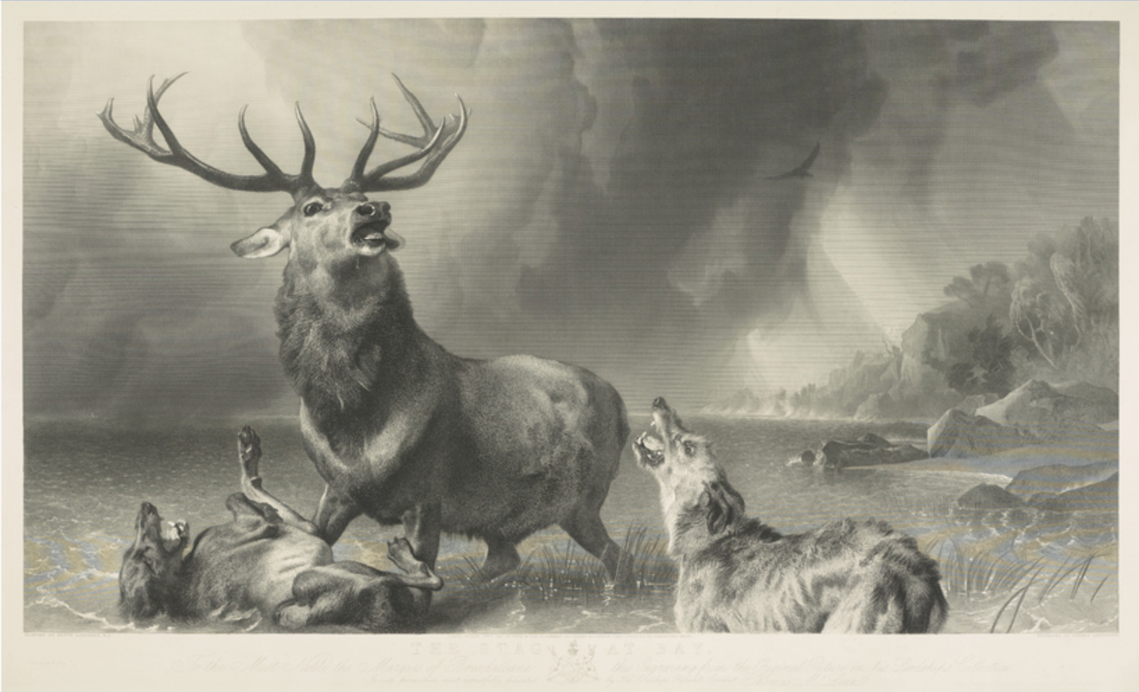 Edwin and Thomas Landseer, The Stag at Bay, engraving, approximately 1848, image courtesy of the Royal Collection Trust