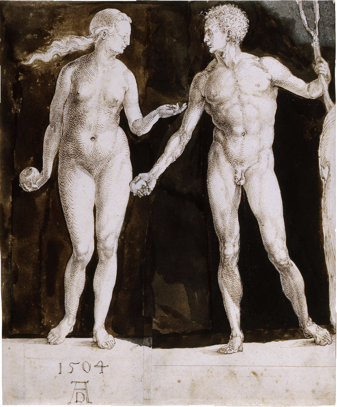 Albrecht Dürer-  Adam and Eve , 1504, brown ink and white corrections on paper, 242 x 201mm, courtesy of the Morgan Library and Museum
