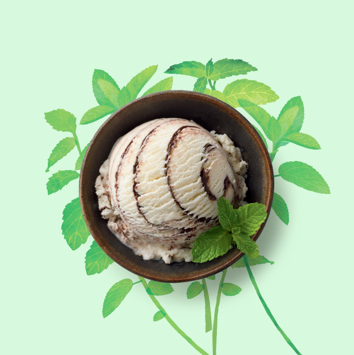 Lucia_peterson_mint_ice_cream.png