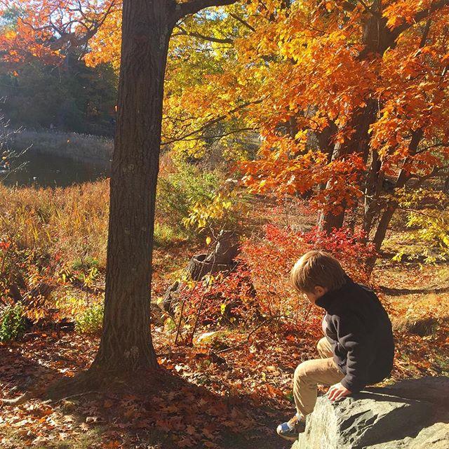 More fall fun