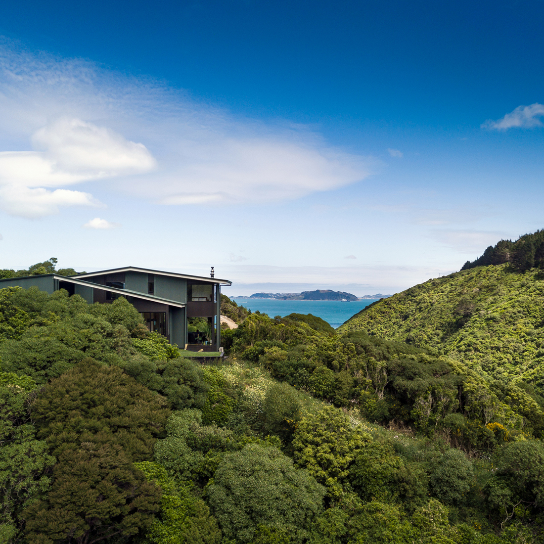 Korokoro Bush House 2017